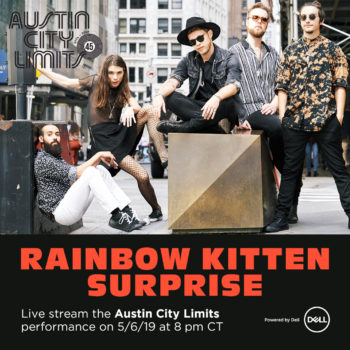 RainbowKittenSurprise_Livestream_45_square